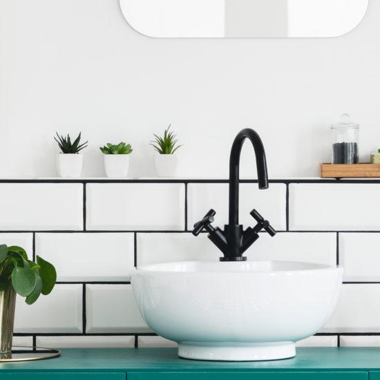 Pflanzen im Bad in verschiedenen Grössen.