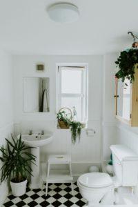 Pflanzen im Bad auf Fensterbank, Boden und Schrank.