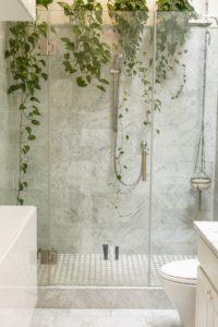 Hängende Pflanzen in der Dusche.